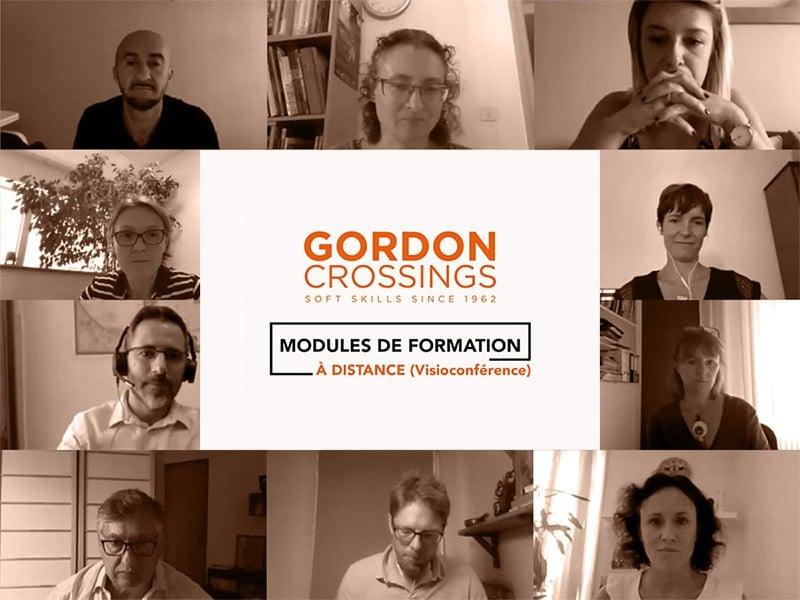 miniature video base gordon crossings encartx800