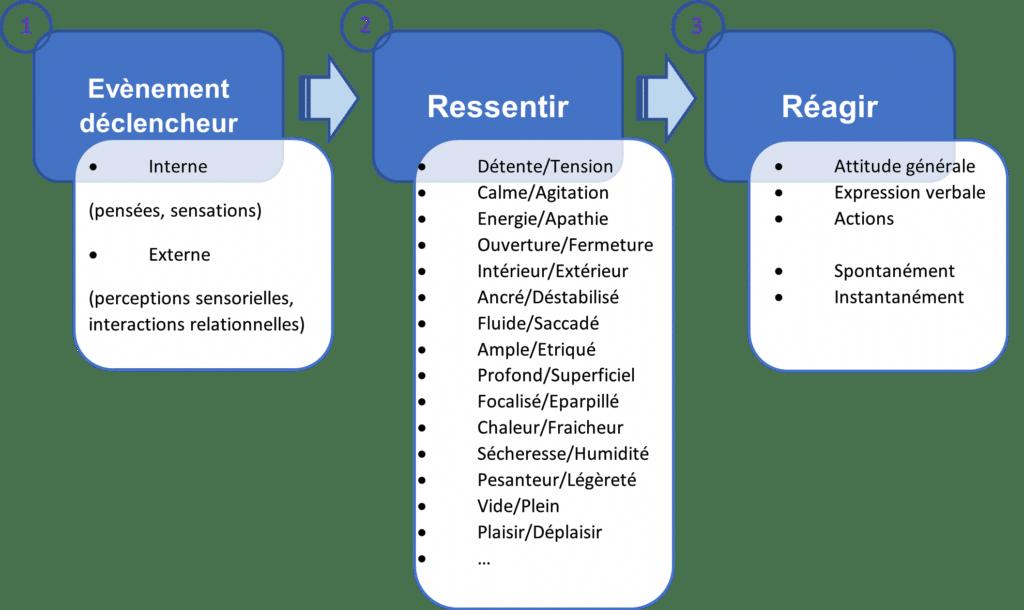 schéma de l'émotion en réaction automatique