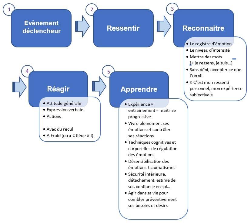 schéma des émotions en réaction corticale